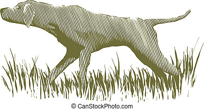 Woodcut Bird Dog - Woodcut-style illustration of a bird dog...