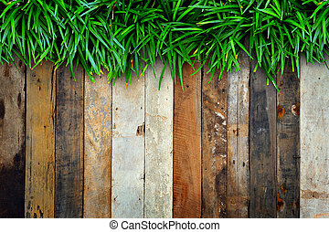 Green grass on wood background.