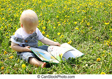 Baby Boy reading book in dandelions - A baby boy sitting in...