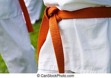 Tae Kwon Do student practicing in the park