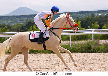 The winner. - Horse racing game in hippodrome...
