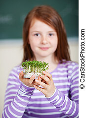 Cress - Young smiling student holding cress in petri dish
