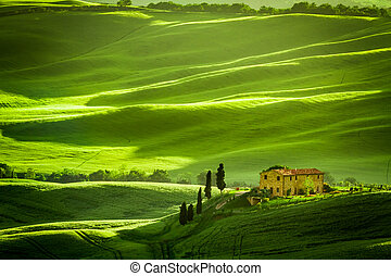 Green fields and meadows with agrotourism
