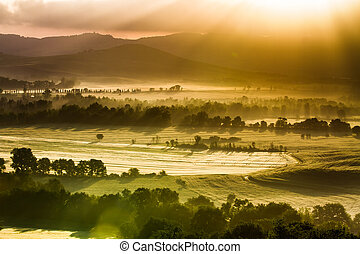 Fog and sun on a warm morning in Tuscany