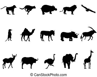 africa animals silhouettes - isolated africa animals...