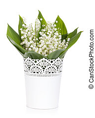 Lily of the valley in flower pot Isolated on white...