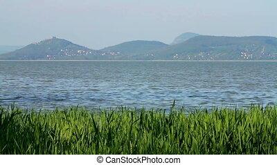 Landscape from lake Balaton (Hungary)