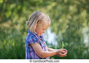 niña, planta