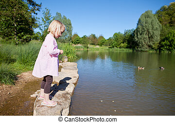 Little girl feeding ducks at the lake standing on a rock at...