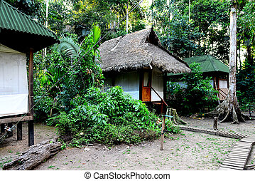Camp in the jungles of Peru - Ornithologists' scientific...