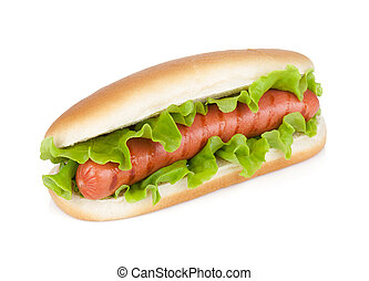 Hot dog with fresh lettuce