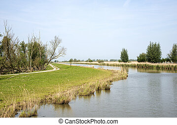 the nature park the oostvaardersplassen in holland - lake in...