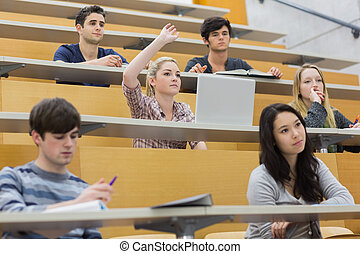 Students having a lesson in the lecture hall - Students...