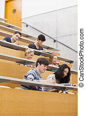 Studying students in a lecture hall - Students sitting in a...