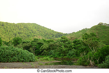 natural mountains and river in tropical rainforest in panama...