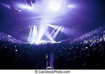 Big Live Music Concert and with Crowd and Lights