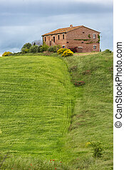 Tuscany farmhouse with fields and flowers, Val d'Orcia,...