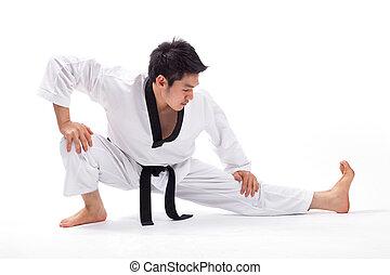 Taekwondo, acción
