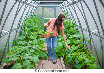 Young happy woman harvests in the greenhouse