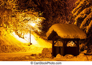 Winter street light - Night scene with snow on the trees in...
