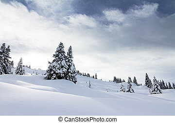 Powder landscape - Beautiful fresh powder landscape with...