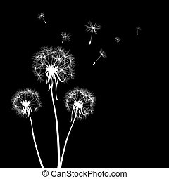 silhouettes of dandelions - vector silhouettes of three...