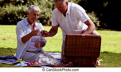 Mature couple having a picnic with white wine in a park