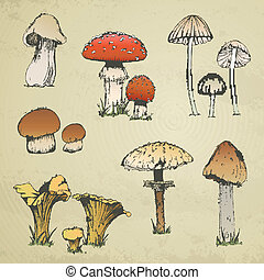 Vector Hand-drawn Mushrooms - Vector Illustration of...