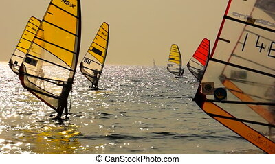Sailboard Windsurfing - Windsurfing sailboard race with...