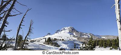 Mount Hood Oregon Panorama