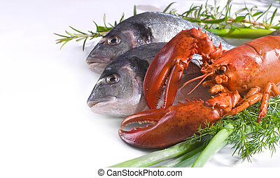 fresh fish with lobster - Fresh gilthead fish and lobster...