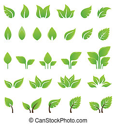 Set of green leaves design elements. This image is a vector...