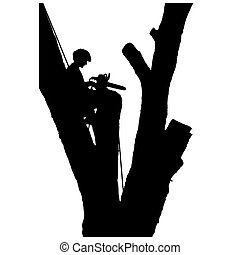 Tree Cutter - A young man is sitting in a tree after cutting...