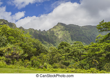 Koolau Mountains Oahu Hawaii - Beautiful green Koolau...