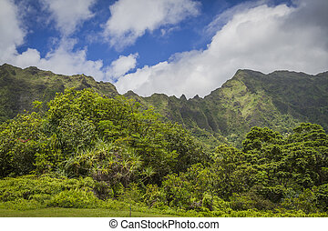 Ko'olau Mountains Oahu Hawaii - Beautiful green Ko'olau...