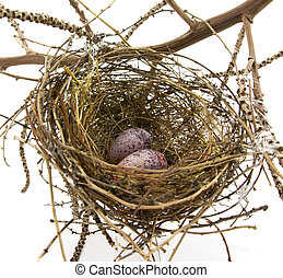 Bird nest and eggs on white - Birds nest made from woven...