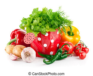 fresh vegetables with green herbs in watering can