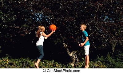 Siblings having fun with a basketball while jumping on a...