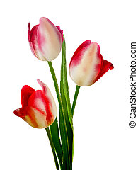 Beautiful bouquet of tulips on a white EPS 10 - Beautiful...