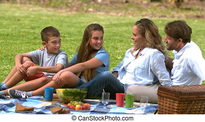 Cheerful family having a picnic together in a park in slow...
