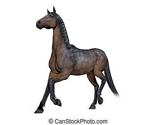 Brown horse - 3D render - Brown horse running in white...