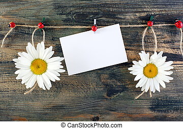 Daisies on fun clothespins and card - Daisies with funny...