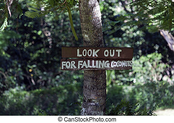 Look out for falling coconuts - sign in the park