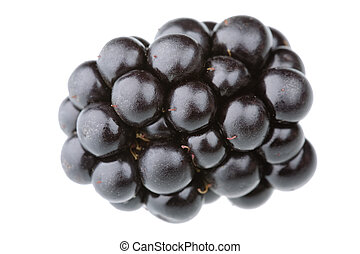 Blackberry - Single blackberry fruit isolated against white...