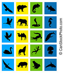 animal icon - vector colored icons categories of animals on...