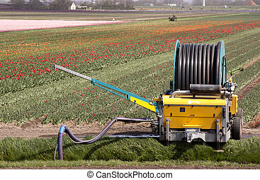 Agriculture in Holland