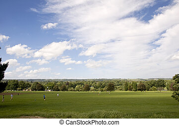Parkland - A view of parkland in summerwith a cloudy sky