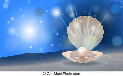 pearl shell - vector shiny pearl in the shell with place for...