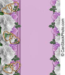 Roses white and lavender border