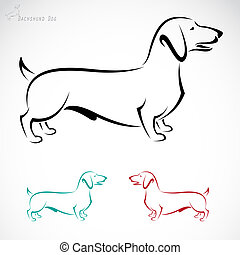 Vector image of an dog Dachshund on a white background